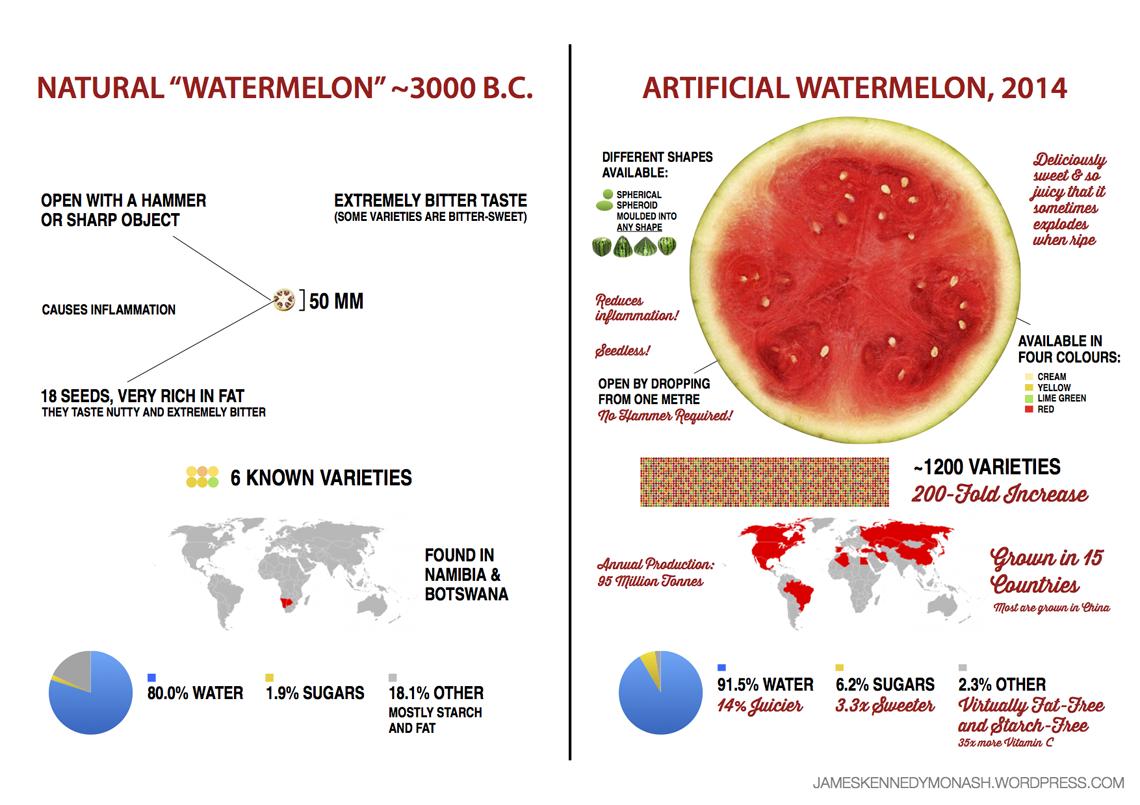 evolucia-rastlin-melon