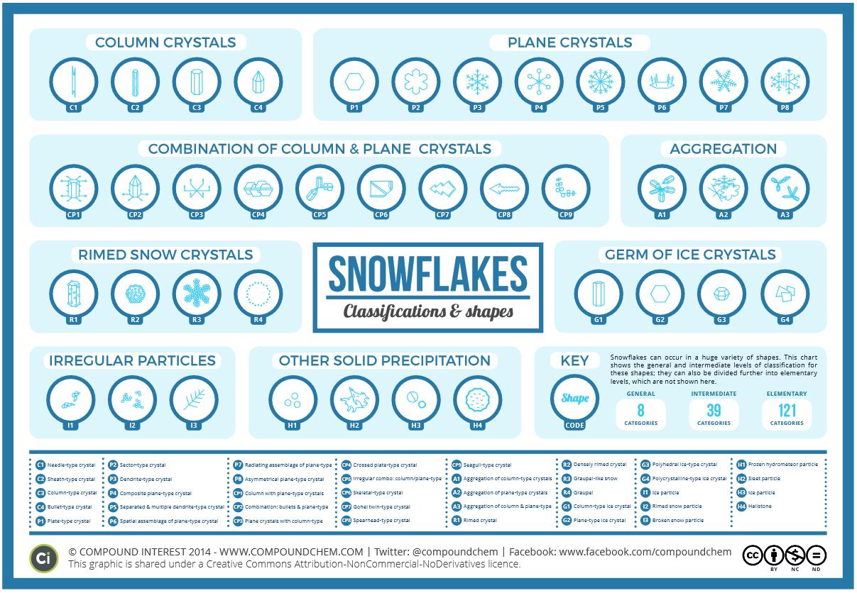 vlocky-druhy-vlociek-infografika